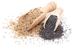 Sesame and poppy seeds. Stock Images