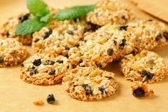 Sesame raisin cookies Stock Image