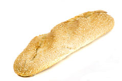 Sesame roll Royalty Free Stock Photo