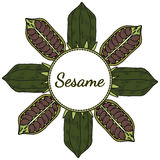 Sesame, Round frame in color 4 Royalty Free Stock Photos