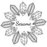 Sesame, Round frame 1 Stock Photos