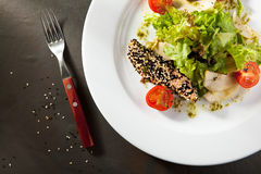 Sesame Seared Salmon Salad royalty free stock photo