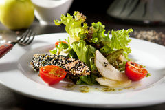 Sesame Seared Salmon Salad stock photography