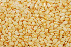 Sesame seed. S with honey, close up Royalty Free Stock Photo