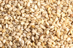 Sesame Seed Background Royalty Free Stock Images