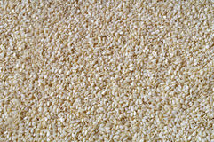 Free Sesame Seed Background - Texture Of Seeds Stock Photos - 60956003