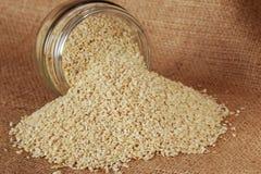 Sesame seed in jar Stock Image