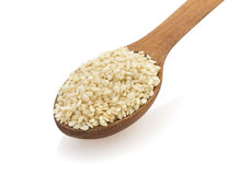 Sesame seed in spon on white Royalty Free Stock Image