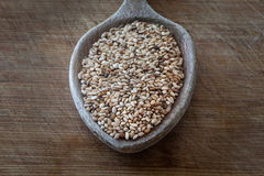 Sesame seed Stock Photography