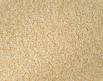 Sesame seeds. Close shot of dried sesame seeds, food background Royalty Free Stock Photos