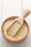 Sesame seeds Stock Image
