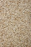 Sesame Seeds background Stock Photography