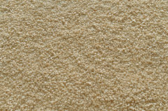 Sesame seeds background. Uncooked sesame seeds as background Royalty Free Stock Photography