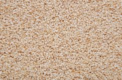 Sesame seeds background Royalty Free Stock Photo
