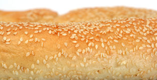 Sesame seeds a bread Stock Image