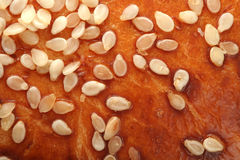 Sesame seeds on bread's crust Royalty Free Stock Image