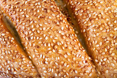 Sesame seeds on a bun close-up Royalty Free Stock Image