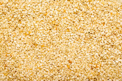 Sesame Seeds Royalty Free Stock Image