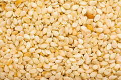 Sesame Seeds Details Royalty Free Stock Photos