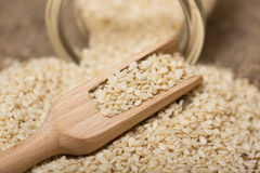 Sesame seeds in  jar Royalty Free Stock Photography