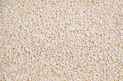Sesame seeds macro background Royalty Free Stock Photography