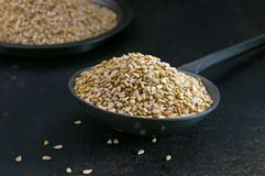 Sesame seeds in a metal scoop stock photos