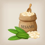 Sesame seeds in sack. Full burlap bag with sesame seeds. Vector illustration vector illustration