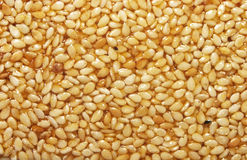 Sesame seeds in sesame oil Royalty Free Stock Photo