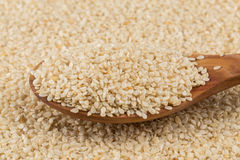 Sesame seeds on spoom Royalty Free Stock Photo