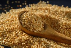 Sesame seeds and spoon. Roasted sesame seeds and wooden spoon royalty free stock images