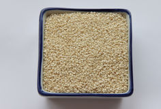 Sesame seeds. In a square shape on a white background Stock Photography