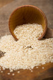 Sesame seeds in  a wooden pot Stock Images