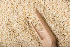 Sesame seeds in  a wooden scoop Stock Photo