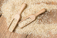 Sesame seeds in  a wooden scoop Stock Photography