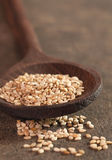Sesame seeds on wooden spoon Stock Images