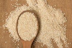 Sesame seeds Royalty Free Stock Image