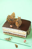 Sesame Square Entremet Cake Royalty Free Stock Photo