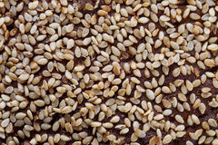 Sesame texture Stock Photography