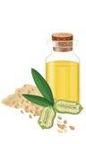 Sesamolie, zaden, fruit, blad, Vecctor-illustratie Stock Fotografie