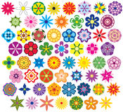 Sesenta flores fabulosas Foto de archivo