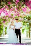 Sesión fotográfica de la boda fotografía de archivo libre de regalías