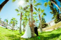 Sesión fotográfica de la boda imagen de archivo libre de regalías