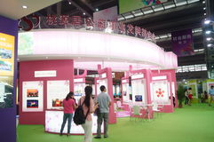 Sesja Porcelanowa dobroczynność projekta wymiany wystawa w Shenzhen konwenci i Powystawowym centrum fourth Fotografia Royalty Free