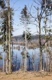 Sesonal accumulation lake Stock Photography