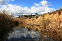 Sespe Creek Stock Images