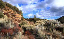 Sespe Wilderness. Panoramic view of the Sespe Wilderness, Los Padres National Forest, CA Stock Photo