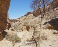 Sesriem, каньон Стоковое Изображение RF