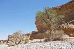 Sesriem, каньон Стоковая Фотография RF
