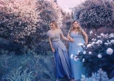 Sessão fotográfica da fada da família Duas mulheres louras com cabelo ondulado em luxuoso, fabuloso, azul vestem-se contra o cont imagens de stock royalty free