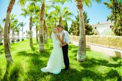Sessão fotográfica do casamento Fotos de Stock Royalty Free